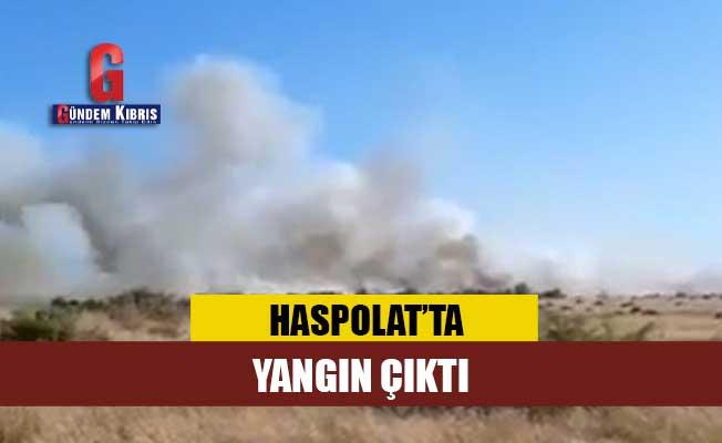 Haspolat'da yangın