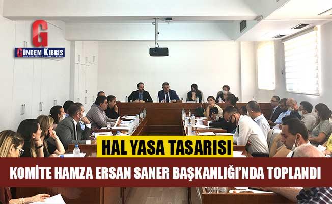 Hal Yasa Tasarısı Komite'de