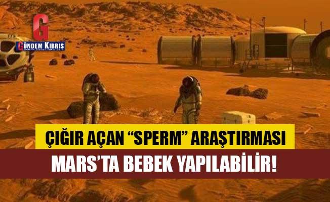 İnsanlar Mars'ta bebek yapabilir