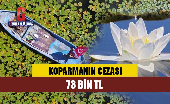Koparmanın cezası 73 bin TL